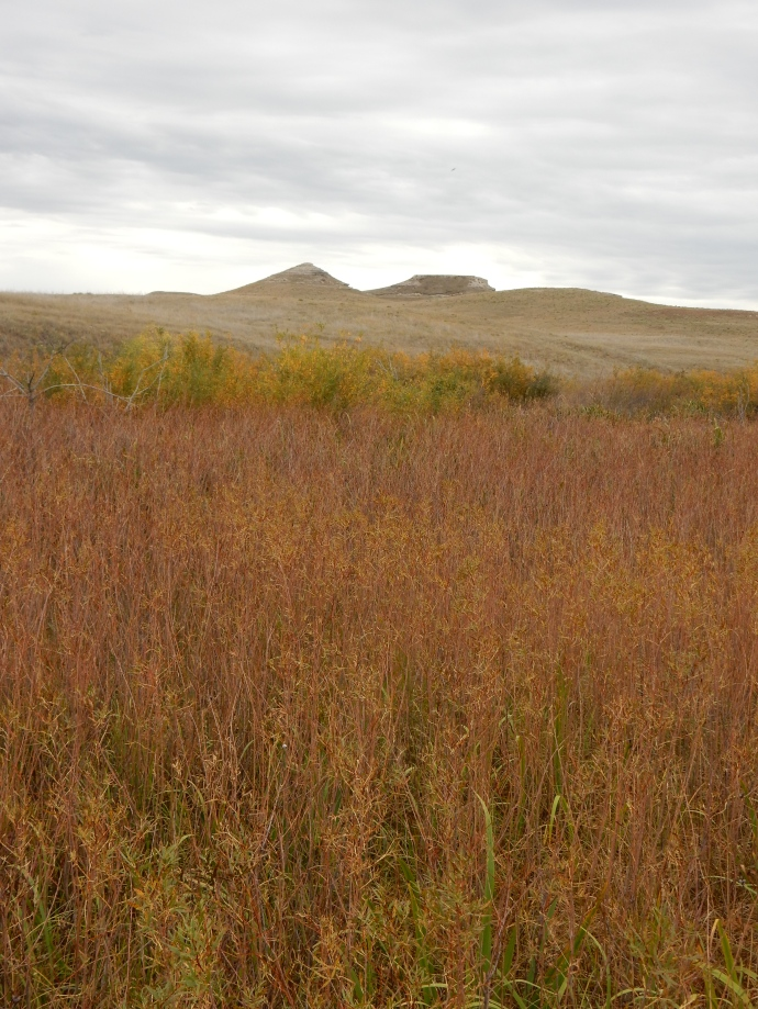 The twin hills where the Agate Fossil Beds were found