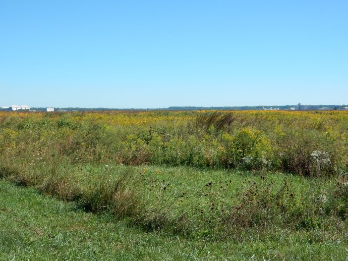 There really is a prairie at Huffman Prairie Flying Field