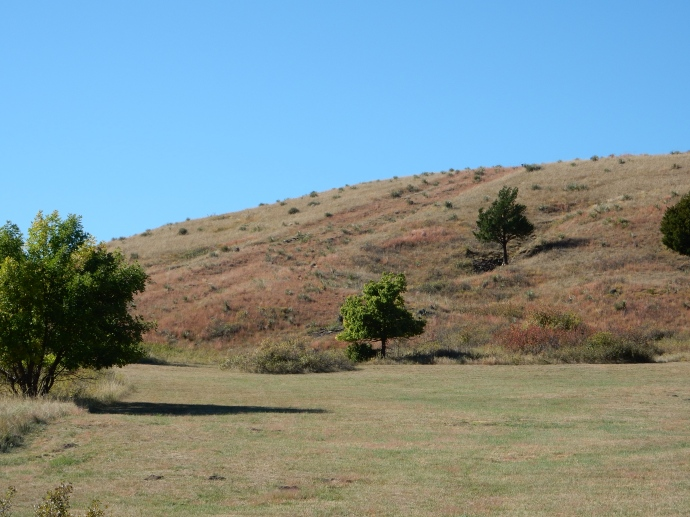 Hillside with ruts from settlers' wagons