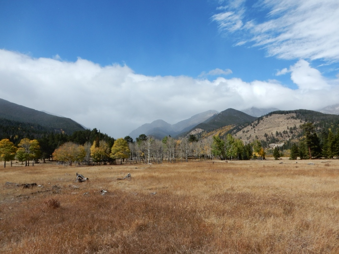 Horseshoe Park, Rocky Mountain National Park