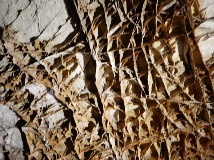 Boxwork formation at Wind Cave National Park