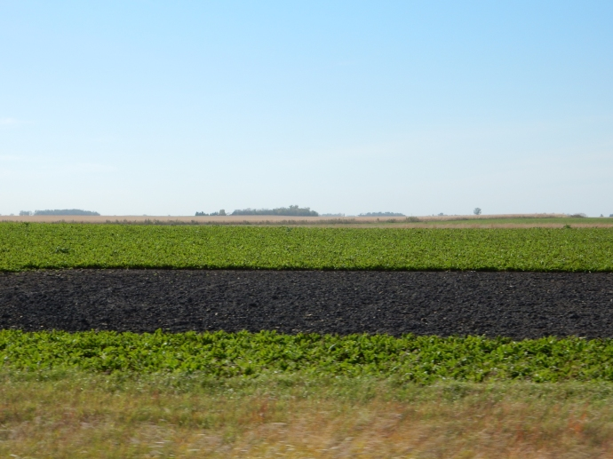 The deep black soil in MN agriculture